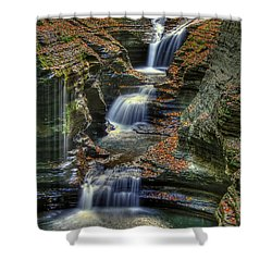 Nature's Tears Shower Curtain by Evelina Kremsdorf