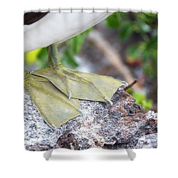 Nazca Booby Feet Shower Curtain by Jess Kraft
