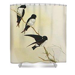Nepal House Martin Shower Curtain by John Gould
