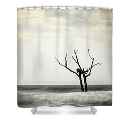Nesting Shower Curtain by Ivo Kerssemakers