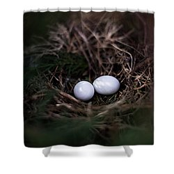 New Birth Shower Curtain by Parker Cunningham