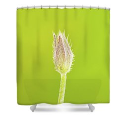 New Life Shower Curtain by Wim Lanclus