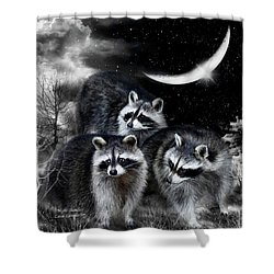 Night Bandits Shower Curtain by Carol Cavalaris