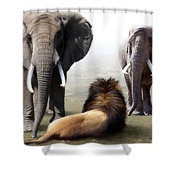 No Fear Shower Curtain by Bill Stephens