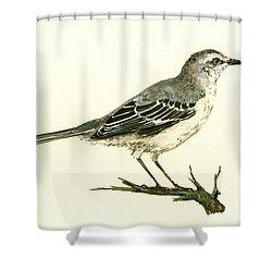 Northern Mockingbird Shower Curtain by Juan  Bosco