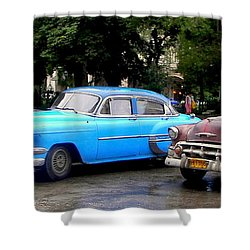 Nostalgia Shower Curtain by Karen Wiles