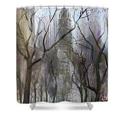 Nyc Central Park 1995 Shower Curtain by Ylli Haruni