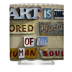 Ode To Art Shower Curtain by Jill Reger