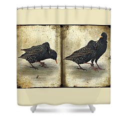 Oh No You Didn't Shower Curtain by Lois Bryan