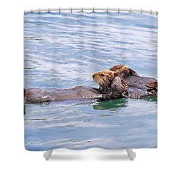Ohh Our Aching Heads - What A Party  Shower Curtain by Donna Kennedy