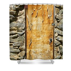 Old Wood Door And Stone - Vertical  Shower Curtain by James BO  Insogna