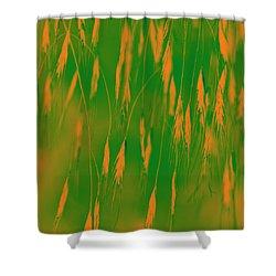 Orange Grass Spikes Shower Curtain by Heiko Koehrer-Wagner