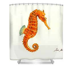 Orange Seahorse Shower Curtain by Juan Bosco