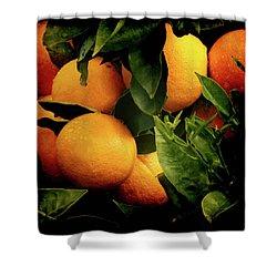 Oranges Shower Curtain by Ernie Echols
