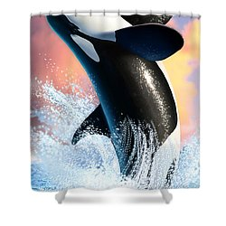 Orca 1 Shower Curtain by Jerry LoFaro
