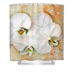 Orchids Upon The Rough Shower Curtain by Andee Design