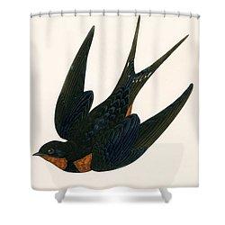 Oriental Chimney Swallow Shower Curtain by English School