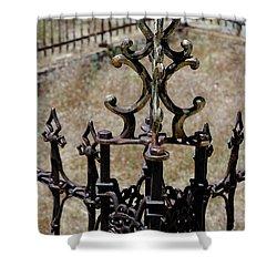 Ornate Iron Works Virginia City Nv Shower Curtain by LeeAnn McLaneGoetz McLaneGoetzStudioLLCcom