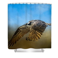 Osprey Over Pickwick Shower Curtain by Jai Johnson
