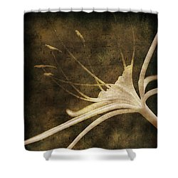 Our Melody Shower Curtain by Susanne Van Hulst