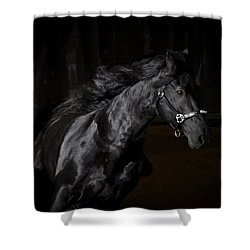 Out Of The Darkness D4367 Shower Curtain by Wes and Dotty Weber