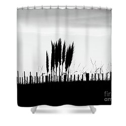 Over The Fence Shower Curtain by Karen Lewis