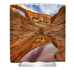 Owachomo Reflected Shower Curtain by Mike  Dawson