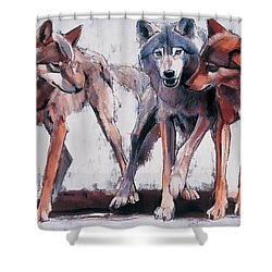 Pack Leaders Shower Curtain by Mark Adlington