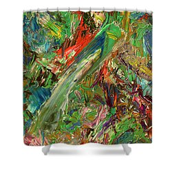 Paint Number 32 Shower Curtain by James W Johnson
