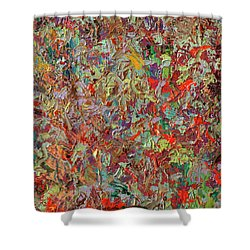 Paint Number 33 Shower Curtain by James W Johnson