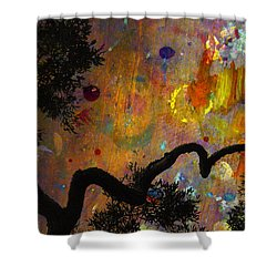 Painted Skies Shower Curtain by Jan Amiss Photography