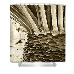 Palm Abstraction Shower Curtain by Ben and Raisa Gertsberg
