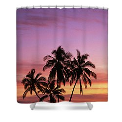 Palm Cluster Shower Curtain by Allan Seiden - Printscapes