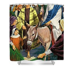 Palm Sunday Shower Curtain by Clive Uptton