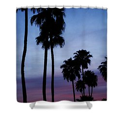 Palm Trees At Sunset Shower Curtain by Jill Reger