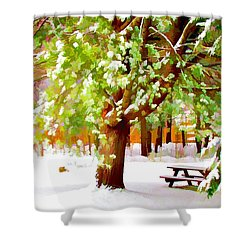 Park In Winter Shower Curtain by Lanjee Chee
