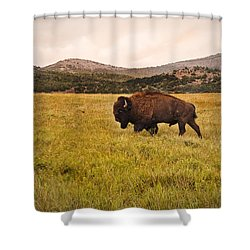 Past His Prime Shower Curtain by Tamyra Ayles