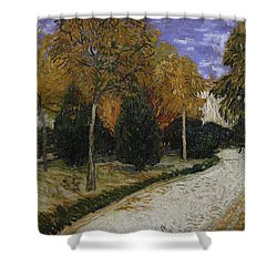 Path In The Park At Arles Shower Curtain by Vincent Van Gogh