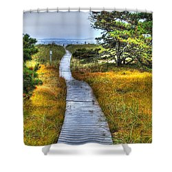 Path To Bliss Shower Curtain by Tammy Wetzel