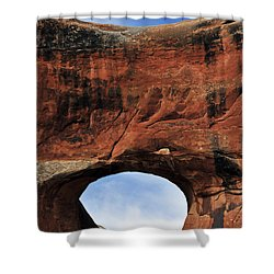 Peek A Boo Shower Curtain by Skip Hunt