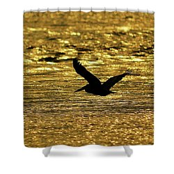 Pelican Silhouette - Golden Gulf Shower Curtain by Al Powell Photography USA