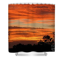 Perfection Shower Curtain by Greg Patzer