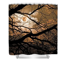 Perigee Moon In The Trees Shower Curtain by Tamyra Ayles