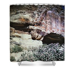 Petra, Transjordan: Cave Shower Curtain by Granger