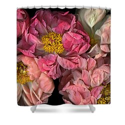 Petticoats Shower Curtain by Christian Slanec