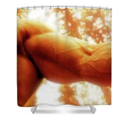 Photo 13 Shower Curtain by Marcin and Dawid Witukiewicz