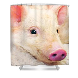 Pig Art - Pretty In Pink Shower Curtain by Sharon Cummings