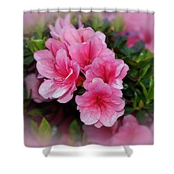 Pink Azaleas Shower Curtain by Sandy Keeton