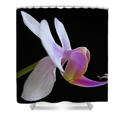 Pink Orchid Shower Curtain by Juergen Roth