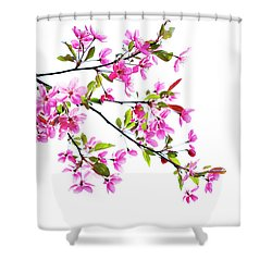 Pink Spring Shower Curtain by Marilyn Hunt